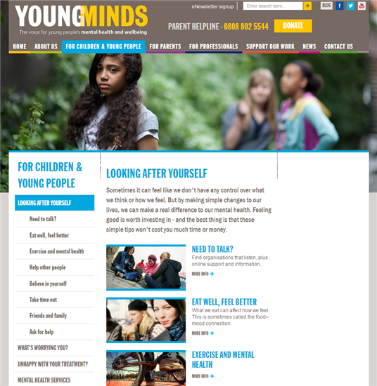 Young minds website snapshot